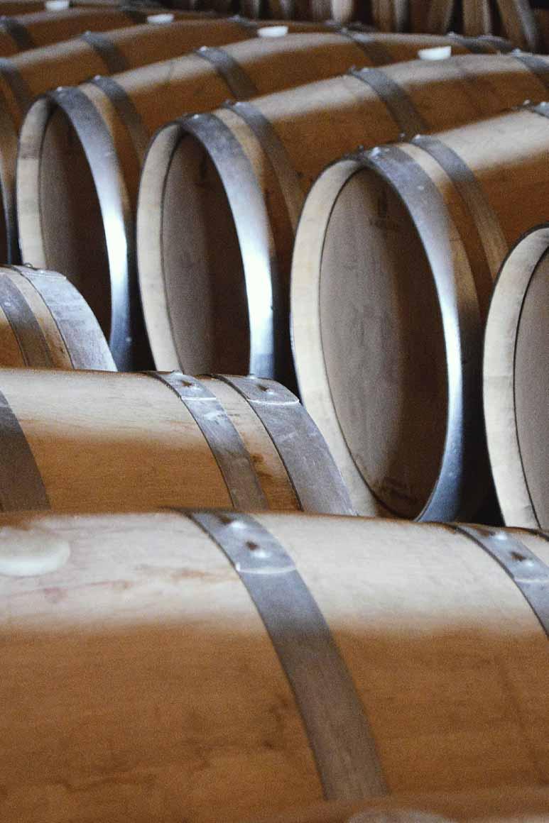 barricas roble americano Bodega y Viñedos Agejas 2